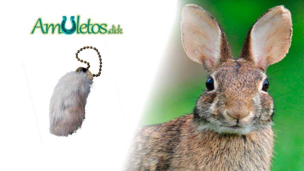 Amuleto de Pata de Conejo